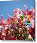 Lilies Pink Lily Flowers Art Prints Floral Summer Garden Baslee Troutman Metal Print