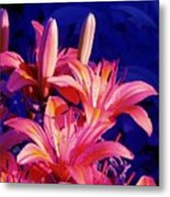 Lillies In Blue Metal Print