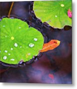 Lillies On Water Metal Print
