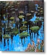 Lilly Pads And Reflections Metal Print