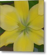Lilly With Artistic Beauty Metal Print