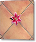 Lily Alone On Tile Metal Print