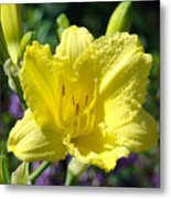 Lily Flower Art Print Canvas Yellow Lilies Baslee Troutman Metal Print