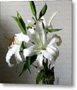Lily Flower Metal Print