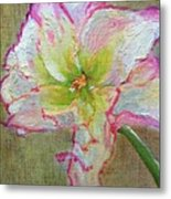 Lily From Paradise Metal Print