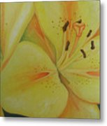 Lily Of The Spring Metal Print