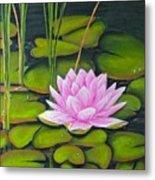 Lily Pond And Pink Metal Print