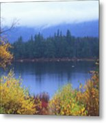 Lily Pond Autumn Kancamagus Highway Metal Print