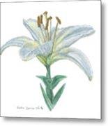 Lily Watercolor Metal Print