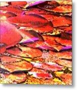 Crimson Lilypads Floating.. Metal Print