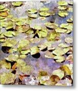 Lilypads W C Metal Print