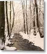 Limentra In Winter Metal Print