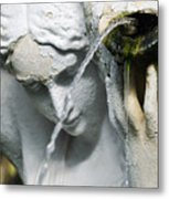 Lincoln Park Conservatory Fountain Metal Print