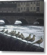 Line Of Birds Metal Print