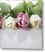 Line Of Tulips Metal Print