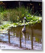 Lines And Reflection Metal Print