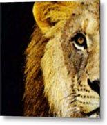 Lion Art - Face Off Metal Print