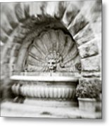 Lion Head Fountain Metal Print