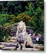 Lion In A Concrete Jungle Metal Print