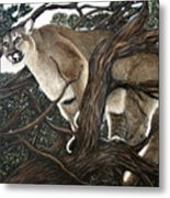 Lion In The Tree Metal Print