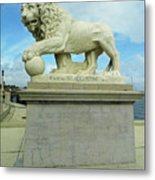 Lion On The North Side Metal Print