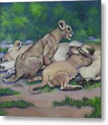 Lioness With Cubs Metal Print