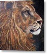 Lions Portrait Metal Print