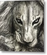 Lion's World Metal Print
