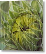 Liquid Sunflower Metal Print