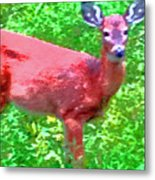 Listening Deer Metal Print
