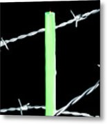 Lit Candle Surrounded By Barbed Wire Metal Print