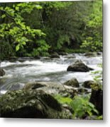Litltle River 1 Metal Print by Marty Koch