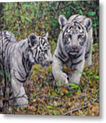 Little And Brave  Metal Print