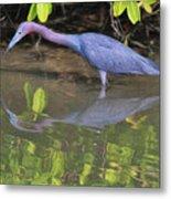 Little Blue Fishing Metal Print