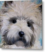 Little Cairn Metal Print