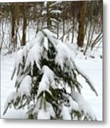 Little Christmas Tree Metal Print