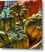 Little Gourds Metal Print