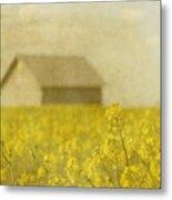 Little House On The Prairie Metal Print