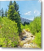 Little House On The River Metal Print