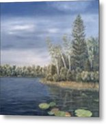 Little Lake In The Woods  Metal Print