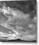 Little Lost Sky Metal Print