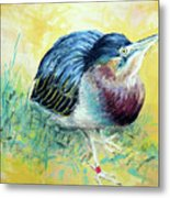 Little Night Heron Metal Print