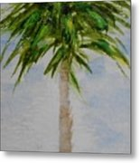 Little Palm Tree Metal Print
