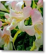 Little Pink And White Flowers Metal Print