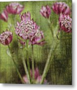 Little Pink Jewels Metal Print
