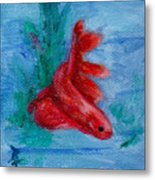 Little Red Betta Fish Metal Print by Brenda Thour