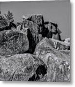 Little Round Top Gettysburg Metal Print