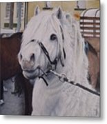 Little Stallion-glin Fair Metal Print
