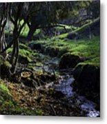Little Stream Metal Print
