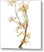 Little Tree 57 Metal Print